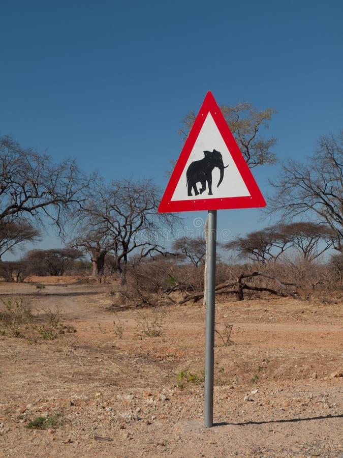 Passen Sie von den Elefanten auf lizenzfreie stockfotografie