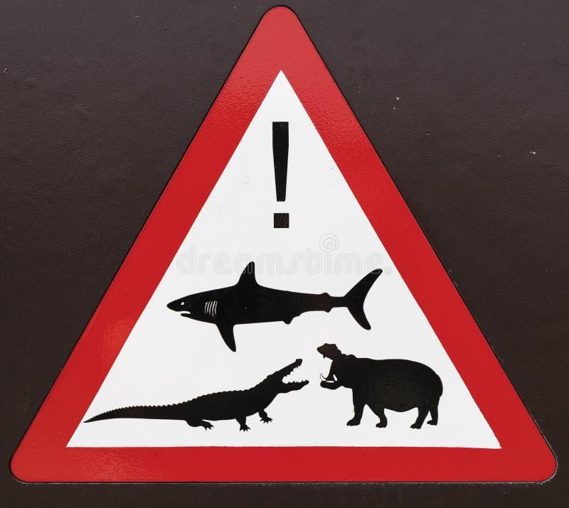 Passen Sie von den wild lebenden Tieren auf stockfoto