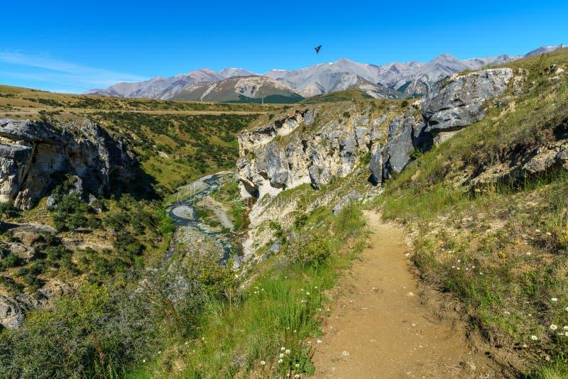 Passerar den sceniska reserven för grottaströmmen, arthurs, Nya Zeeland 6 royaltyfria bilder