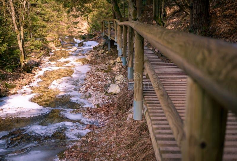 Passerella di legno lungo il fiume congelato fotografie stock libere da diritti