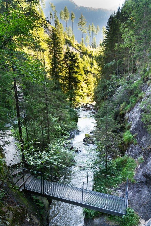 Passerella sulla traccia alpina attraverso la gola dell'inferno, Schladming, Austria fotografia stock libera da diritti