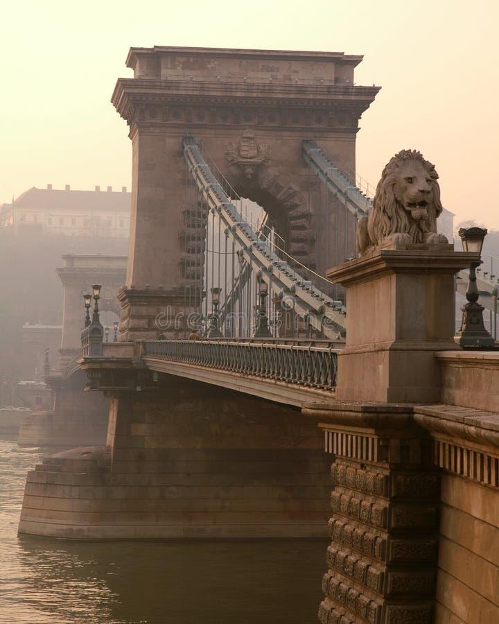 Passerelle à chaînes et lion de Budapest photos stock