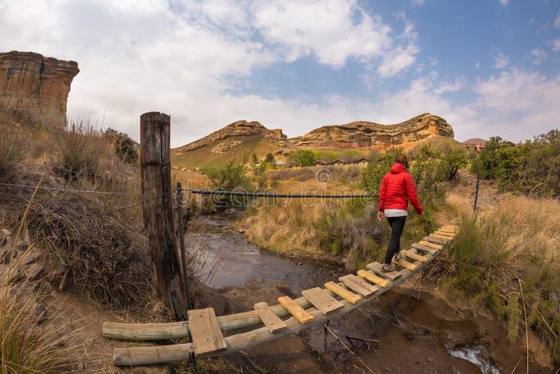 Passerelle accrochante de croisement de randonneur de femme, suspendue sur le courant, dans les montagnes majestueuses parc natio photos stock
