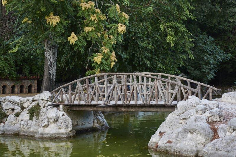 Passerelle au-dessus d'un lac image stock