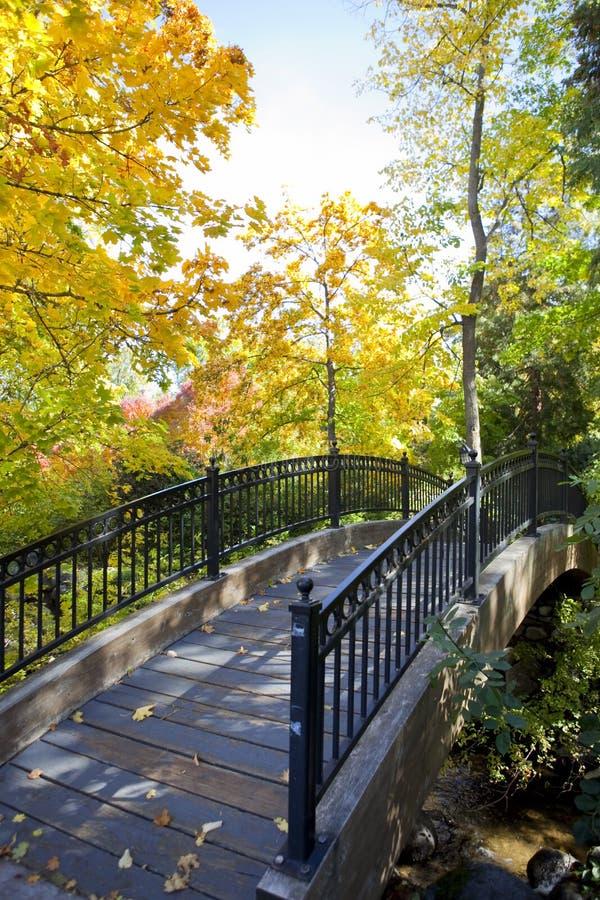 Passerelle d'automne photo libre de droits