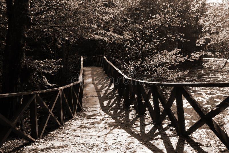 Passerelle d'automne photographie stock libre de droits