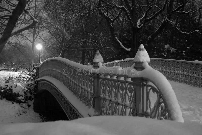 Passerelle de Central Park photo stock
