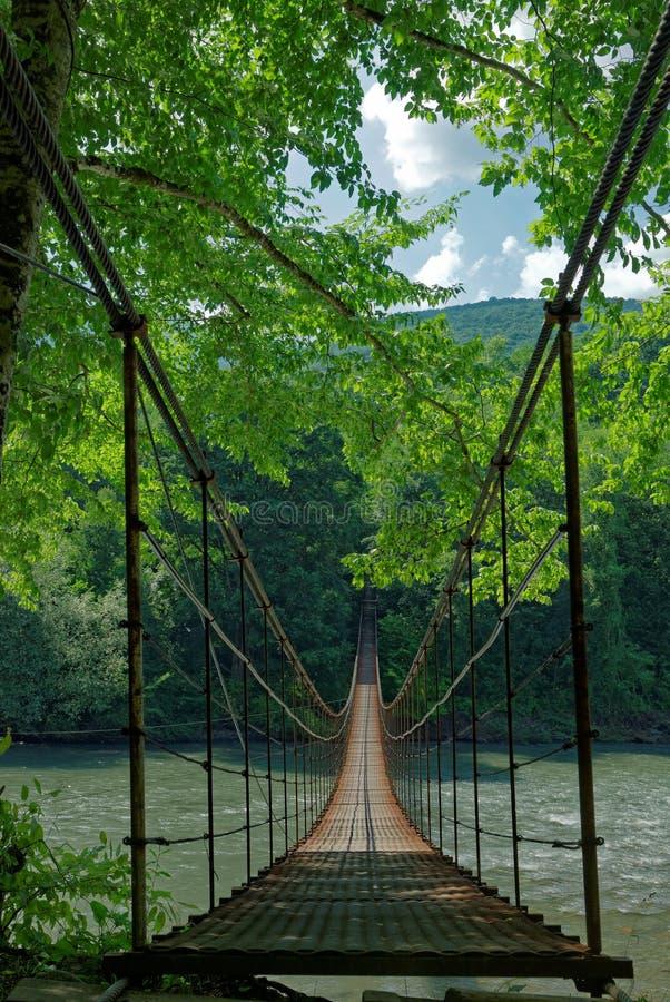 Passerelle de la suspension Bridge photographie stock