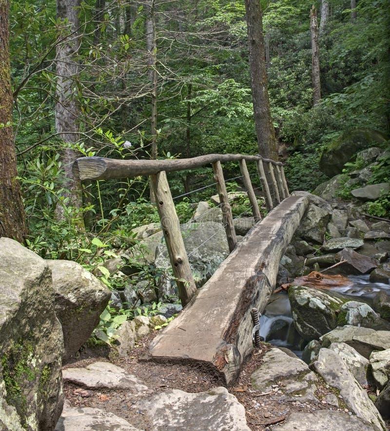 Passerelle de rondin, parc national de Great Smoky Mountains image stock