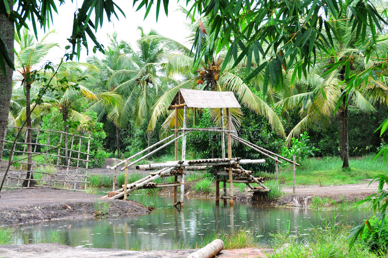 Passerelle en bambou photo libre de droits