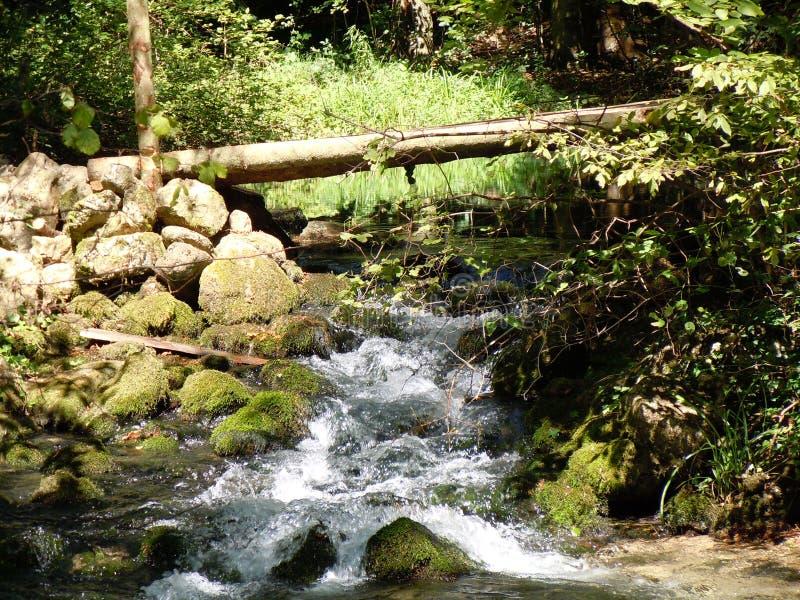 Passerelle en bois au-dessus de fleuve de montagne image stock