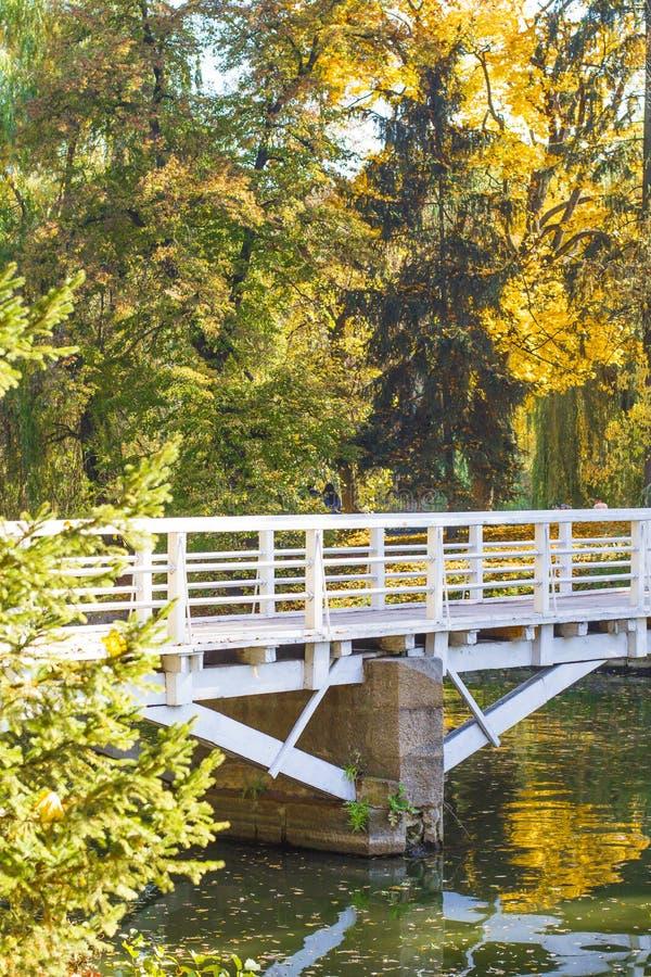 Passerelle en bois au-dessus du fleuve image libre de droits