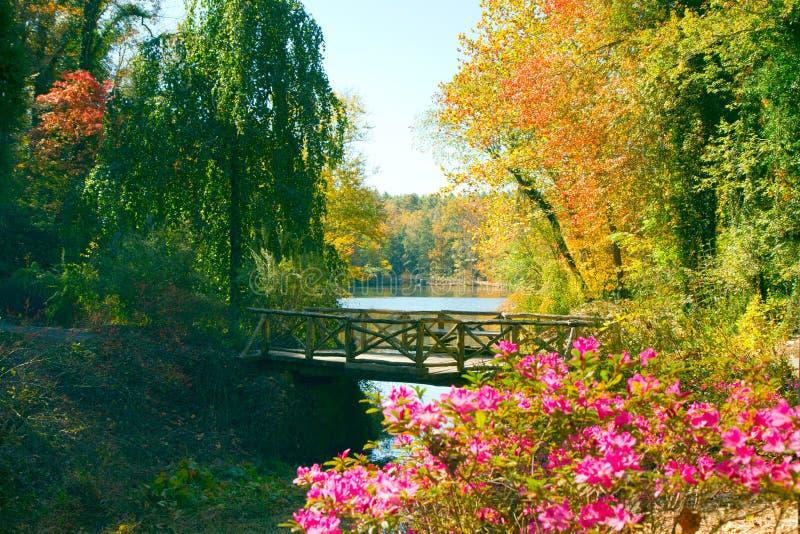 Passerelle en bois dans l'automne photo stock