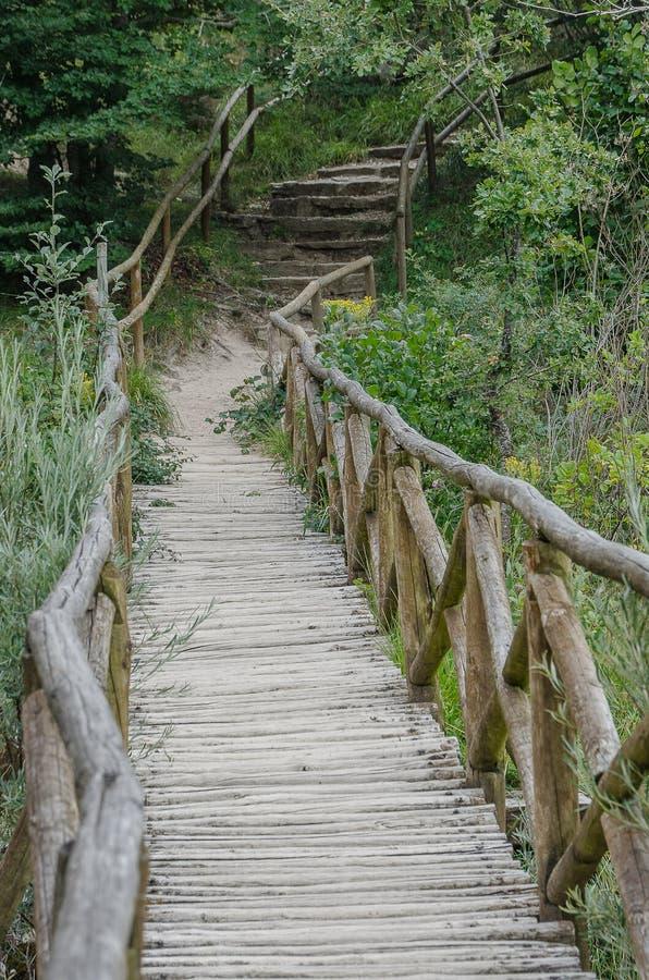 Passerelle en bois de Covalagua Palencia image libre de droits