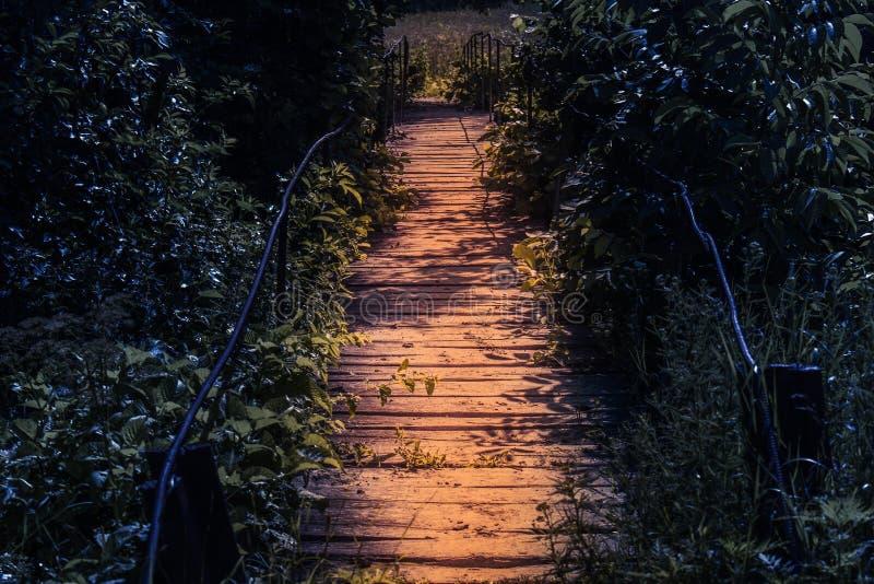 Passerelle en bois de point culminant la nuit dans une atmosphère de conte de fées Voie dans la forêt fantasmagorique foncée dans image stock