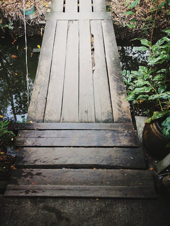 Passerelle en bois photographie stock