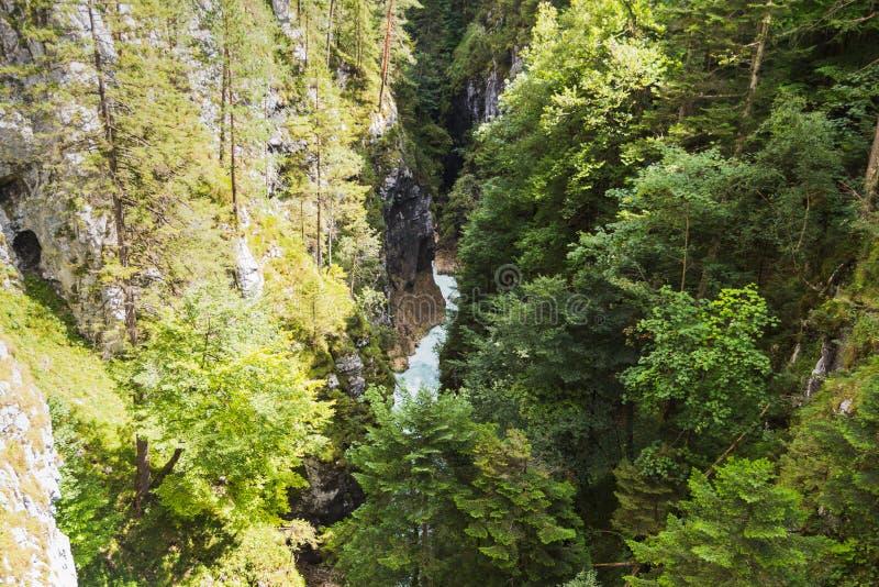 Passerelle par la gorge traversant les vall?es vertes sur la rivi?re image stock