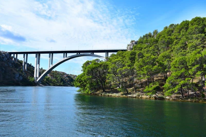 Passerelle sur le fleuve Côte verte avec des pins image stock