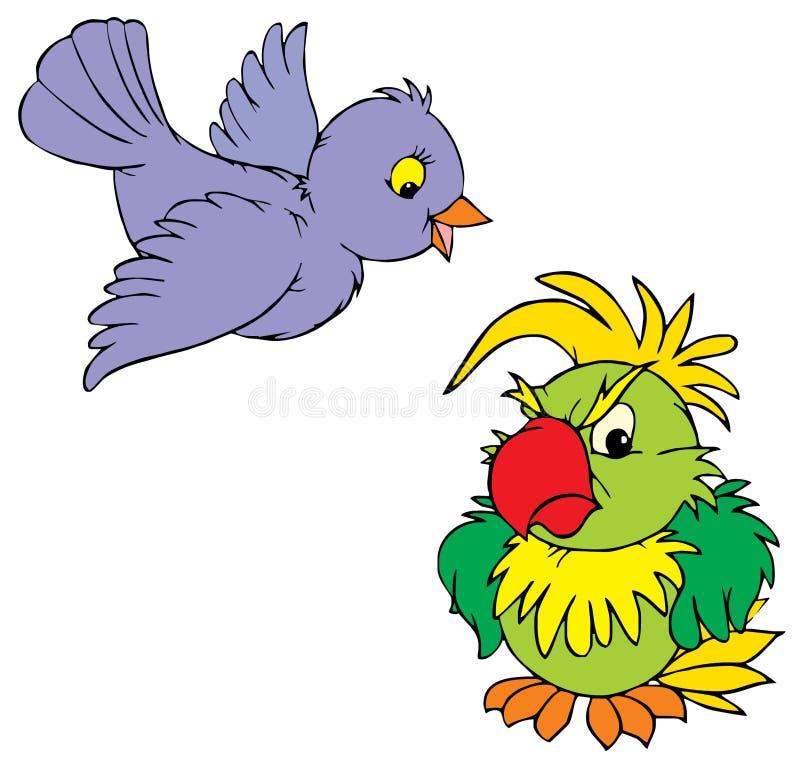 Passero e pappagallo   illustrazione di stock