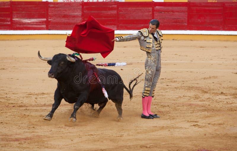 Passess des Bullfighter Israel Lancho lizenzfreie stockfotos