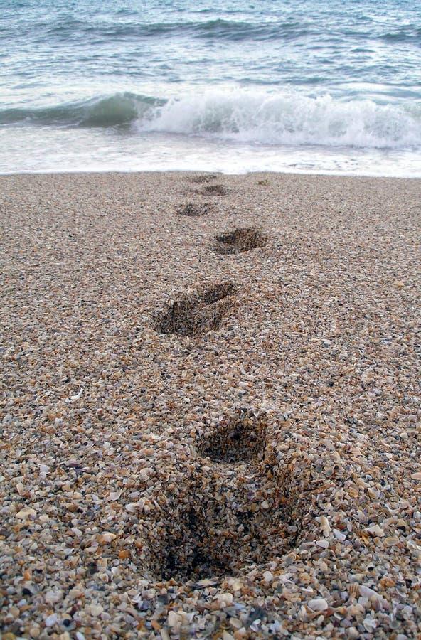 Download Passi dall'oceano fotografia stock. Immagine di spiaggia - 218312