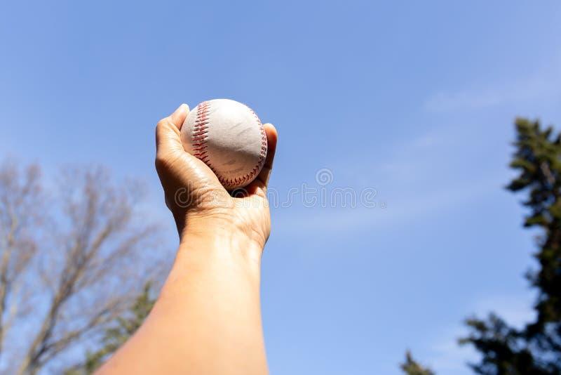 Passi il baseball della tenuta contro il cielo pulito blu con l'albero fotografia stock