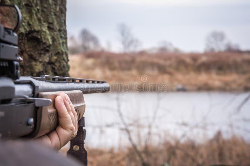 Passi il fucile da caccia della tenuta che tende e aspetti al colpo durante la caccia con lo spazio della copia fotografia stock libera da diritti