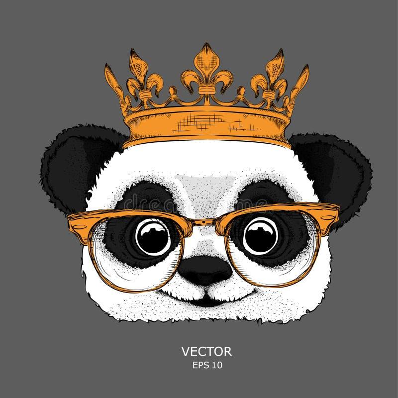 Passi il ritratto di immagine di tiraggio del panda nella corona dell'oro Illustrazione di vettore di tiraggio della mano illustrazione di stock