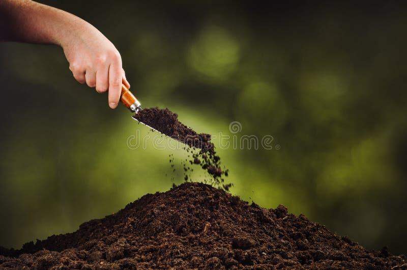 Passi il suolo nero di versamento sul fondo del bokeh della pianta verde immagine stock