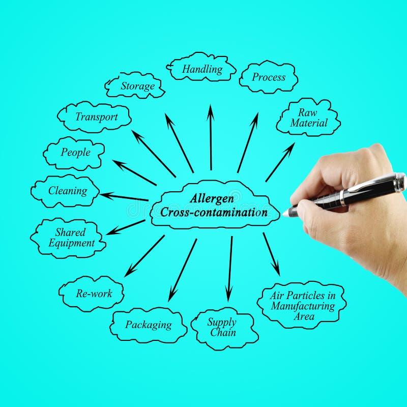 Passi l'elemento di scrittura di contaminazione trasversale dell'allergene per il busin immagini stock libere da diritti