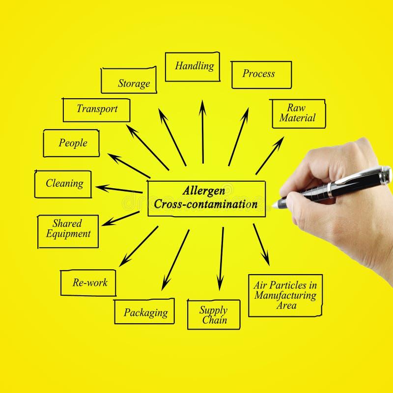 Passi l'elemento di scrittura di contaminazione trasversale dell'allergene per il busin fotografia stock libera da diritti