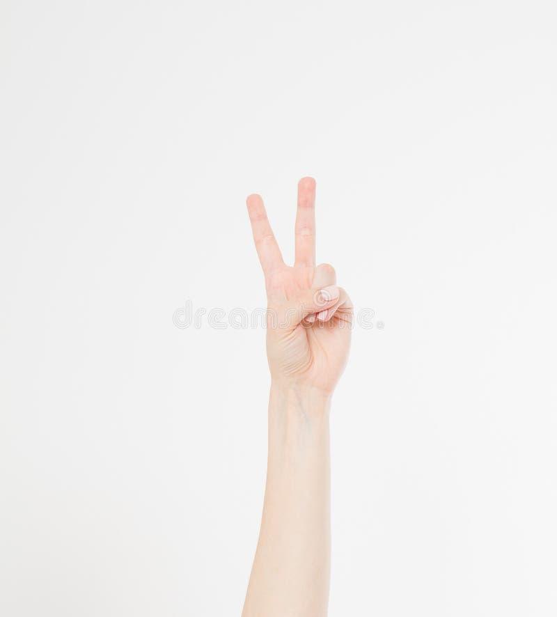 Passi la mostra del segno della vittoria o del primo piano di pace isolato su fondo bianco Front View Derisione su Copi lo spazio fotografie stock libere da diritti
