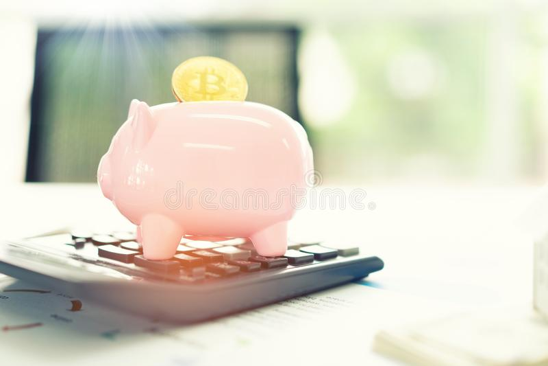 Passi mettere i soldi della moneta al risparmio del porcellino salvadanaio, conservi il concetto dei soldi immagini stock libere da diritti