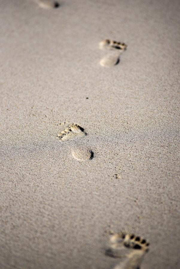 Passi sulla sabbia, sulla spiaggia sabbiosa e sulle coste di Lanzarote, fotografie stock