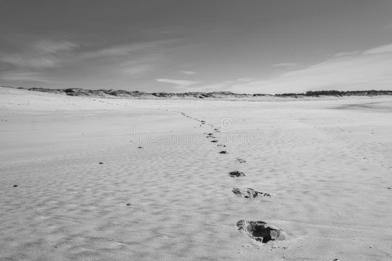 Passi sulla sabbia in una spiaggia abbandonata immagini stock