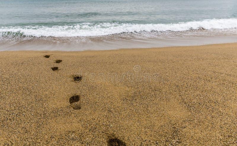 Passi sulla sabbia verso il mare fotografia stock libera da diritti