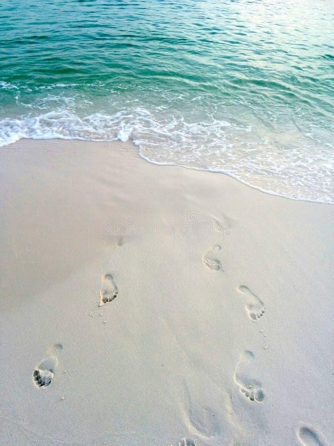 Passi sulla sabbia vicino all'acqua sulla spiaggia immagini stock libere da diritti