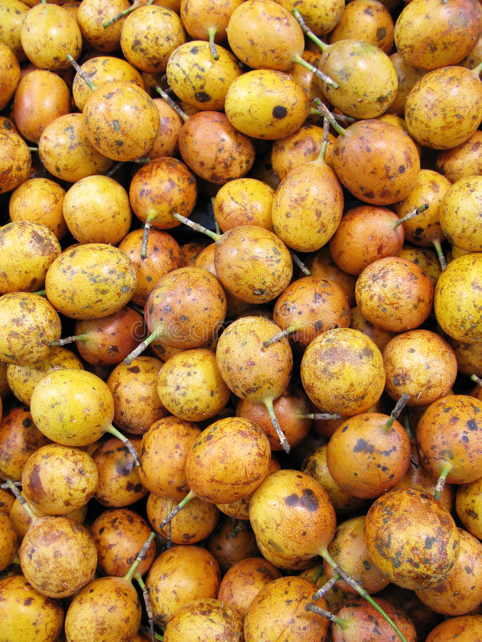 Passiflora commestibile al servizio fotografia stock libera da diritti