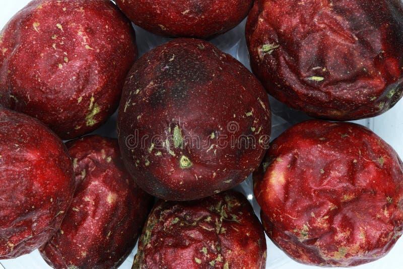 Passiflora commestibile isolata Intera struttura del fondo del frutto della passione immagini stock libere da diritti