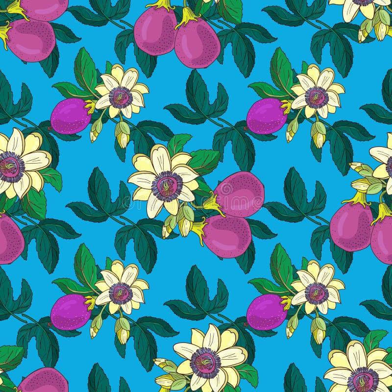 Passiflora della passiflora, senza cuciture floreale della frutta porpora di passione illustrazione di stock