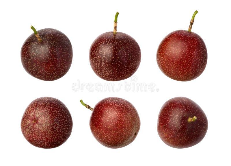 Passion Fruit isolated on white stock photo