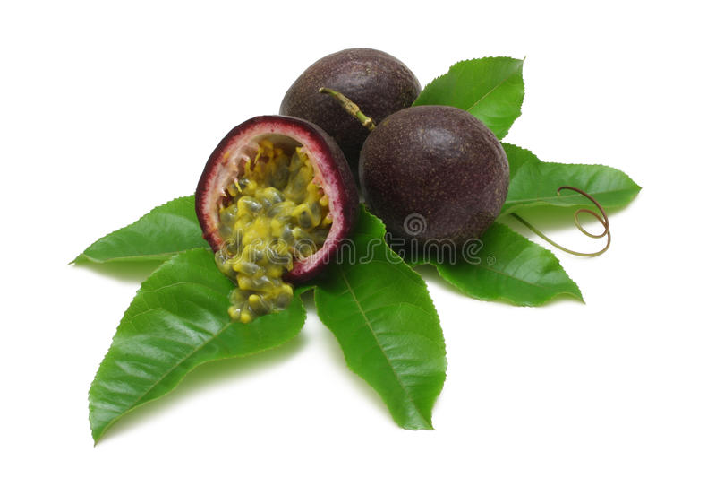 Download Passion Fruits stock image. Image of vine, summer, fruit - 12751635