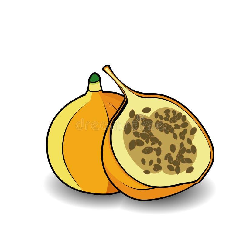 Passionfruit平的象 热带的果子 传染媒介例证, 向量例证