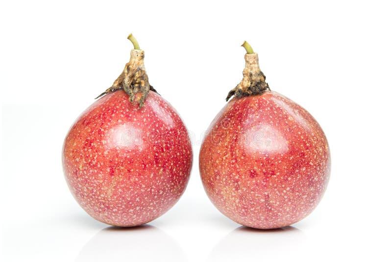 Passionfrukter som isoleras på vit royaltyfria foton