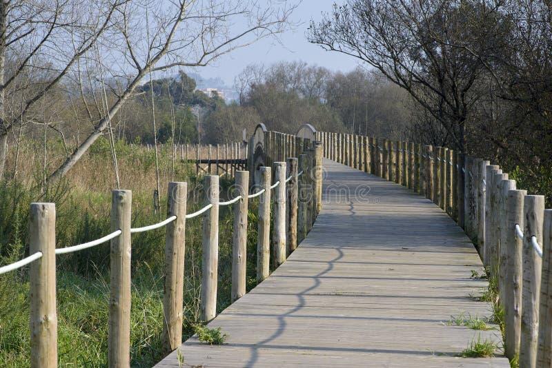 Passo de madeira e ponte na reserva natural de Esmoriz, Portugal foto de stock royalty free