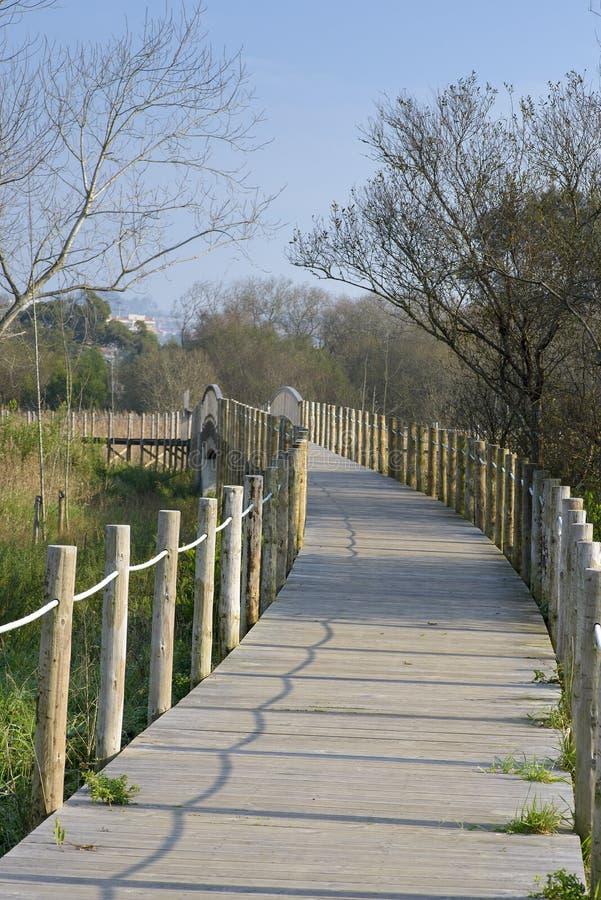 Passo de madeira e ponte na reserva natural de Esmoriz, Portugal imagens de stock royalty free