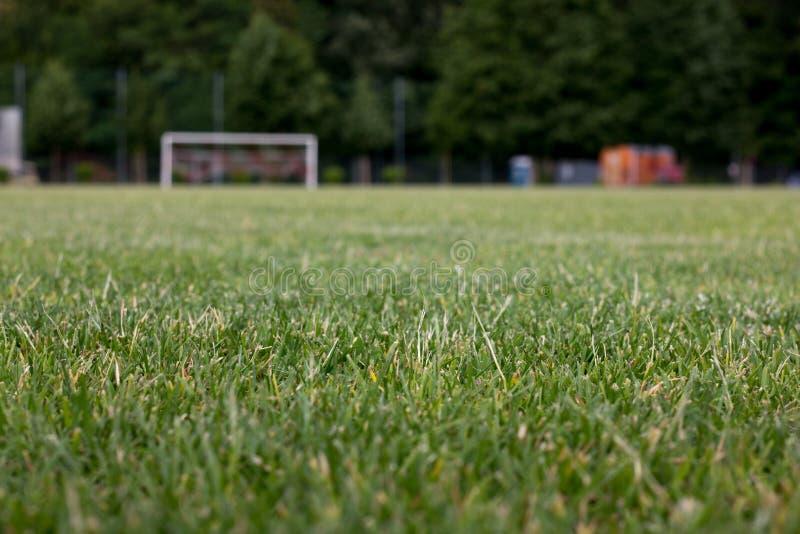 Passo di calcio dell'erba fotografia stock libera da diritti