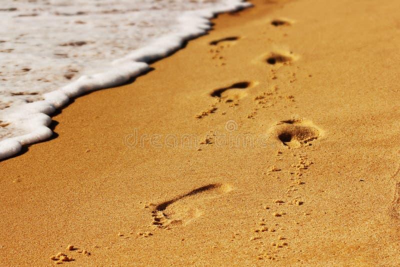 Passo na praia foto de stock royalty free
