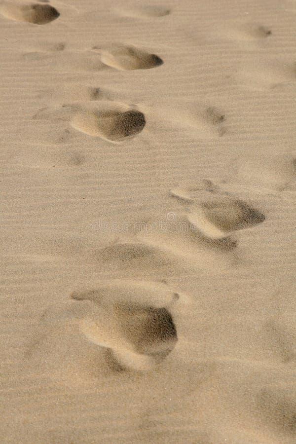Passos na areia imagem de stock