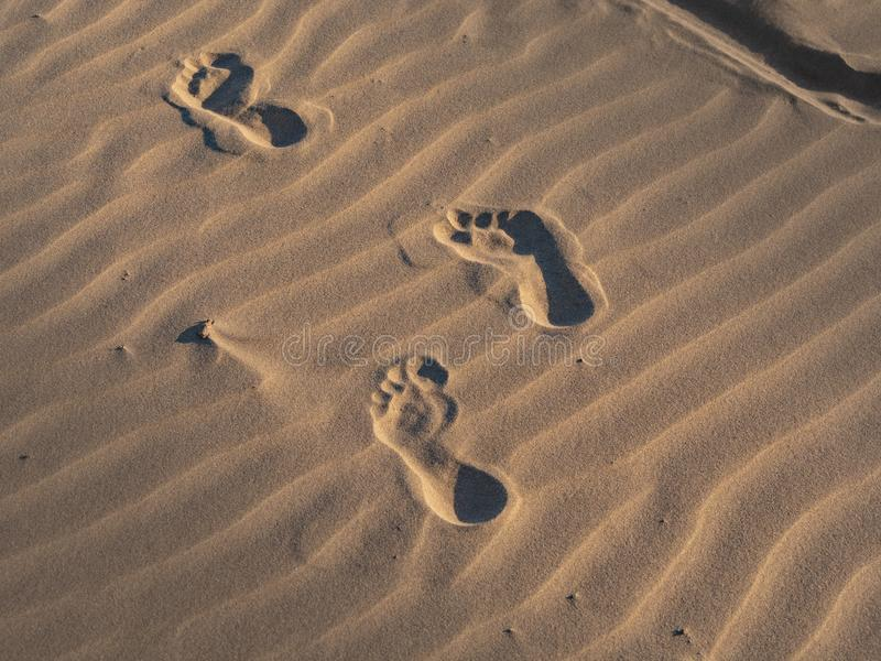 Passos na areia em uma praia imagens de stock royalty free